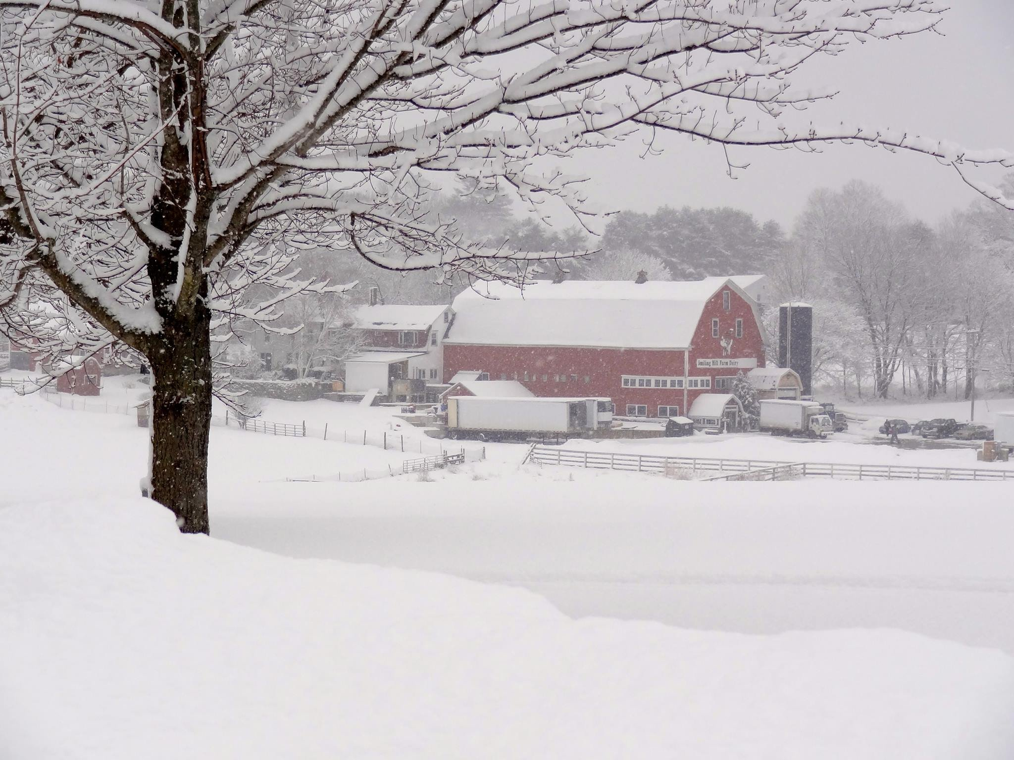 Winter is a beautiful season on the Farm. We offer cross country skiing and snowshoeing, including rentals.