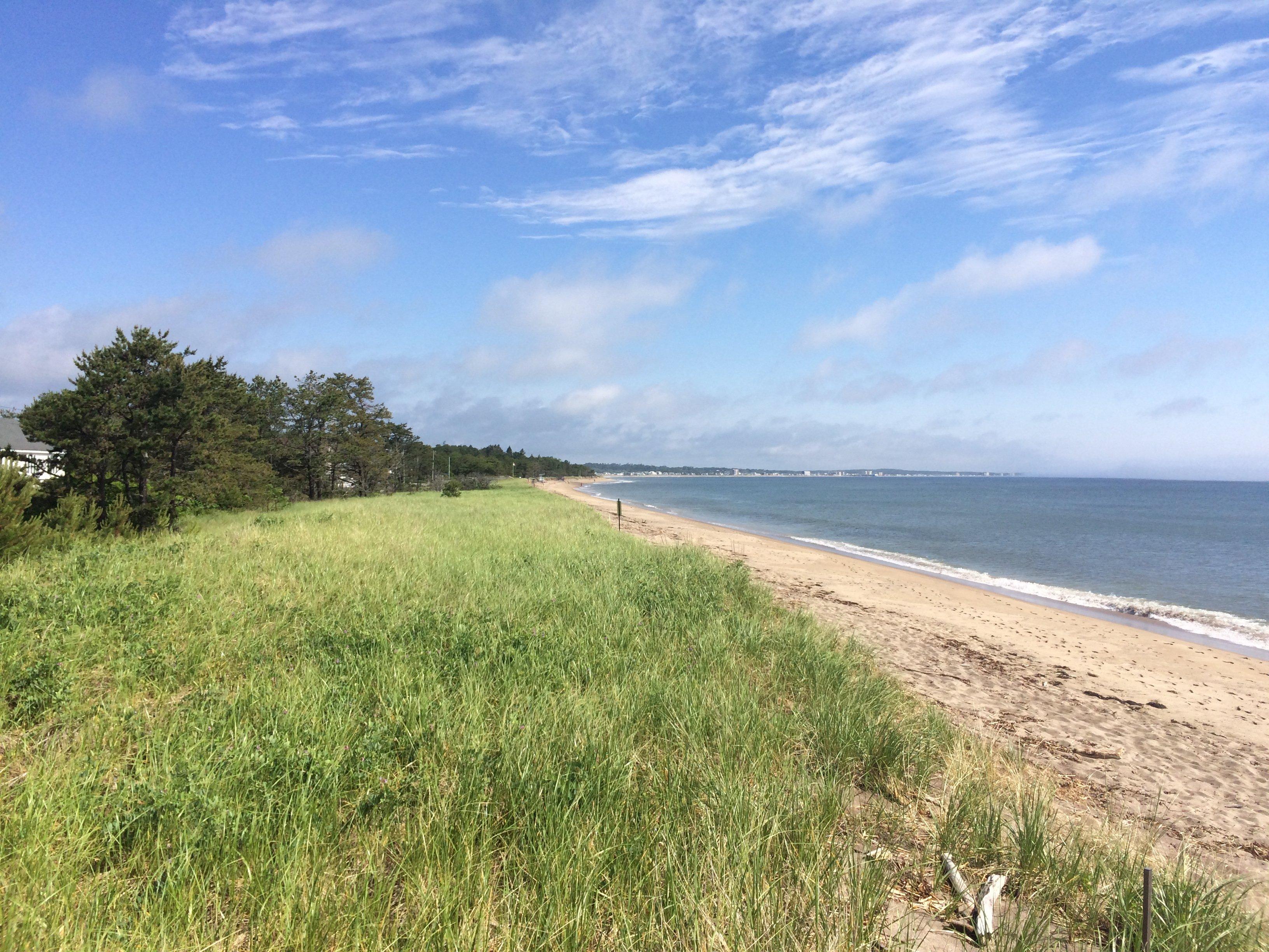 Looking North at Saco Bay
