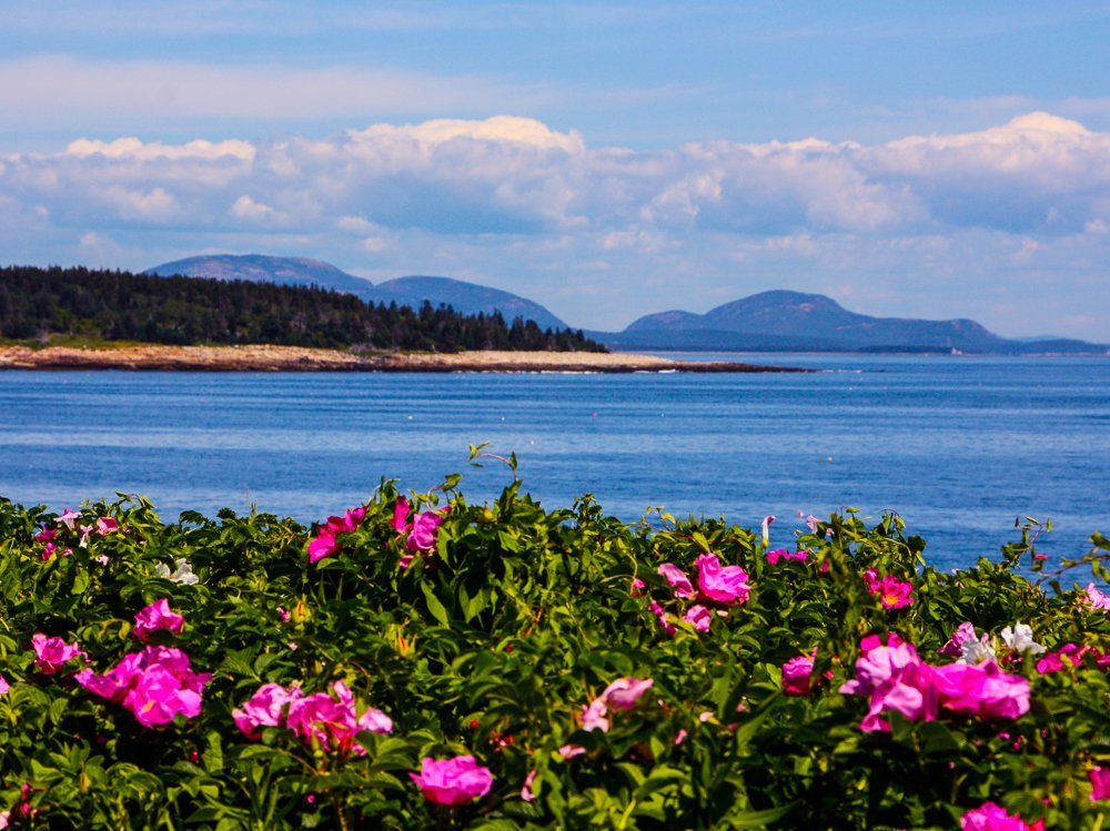 The view from the house to the north - Little Duck Island and the mountains of Acadia National Park.