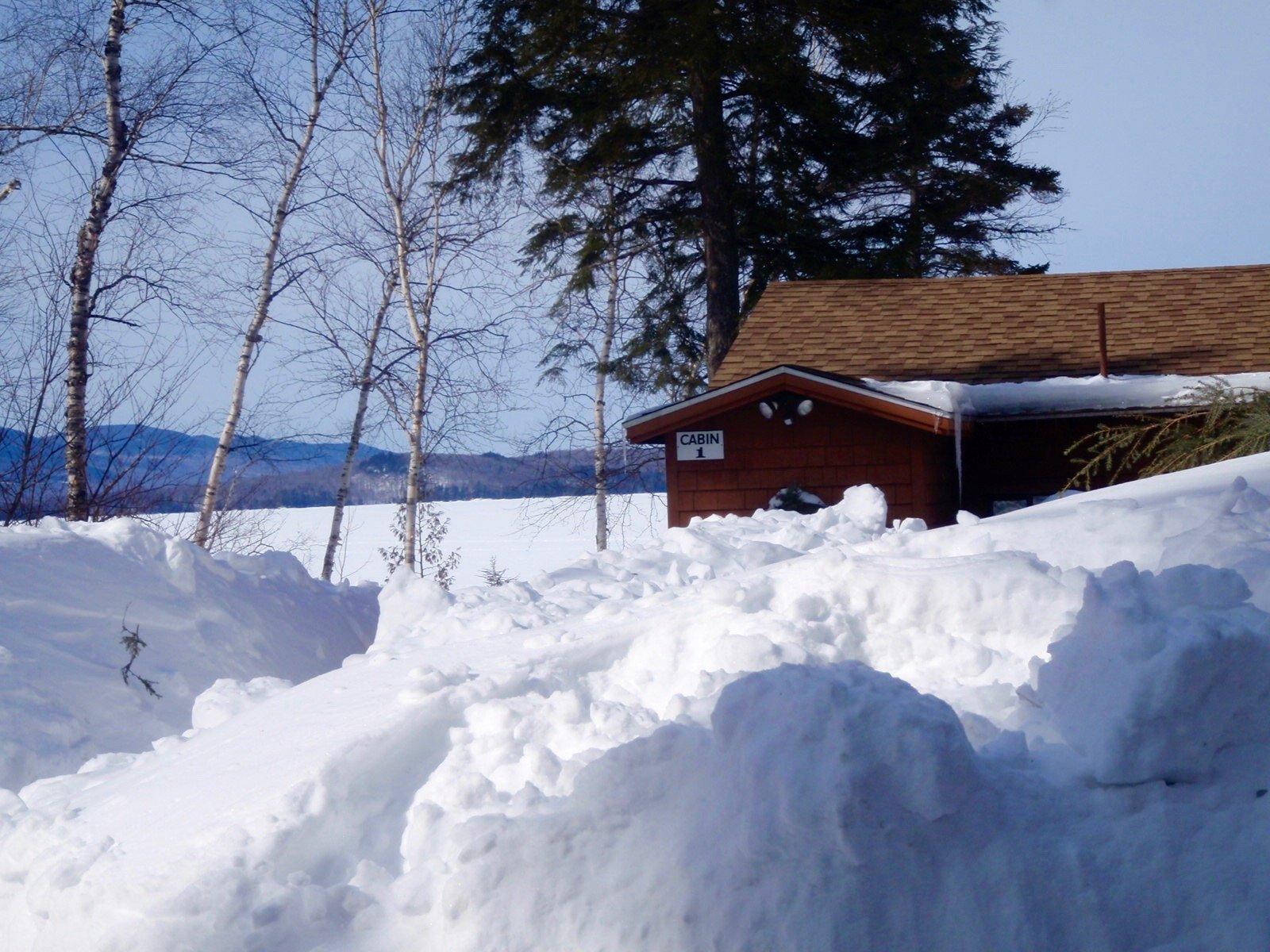 Winter Cabin Sightseeing