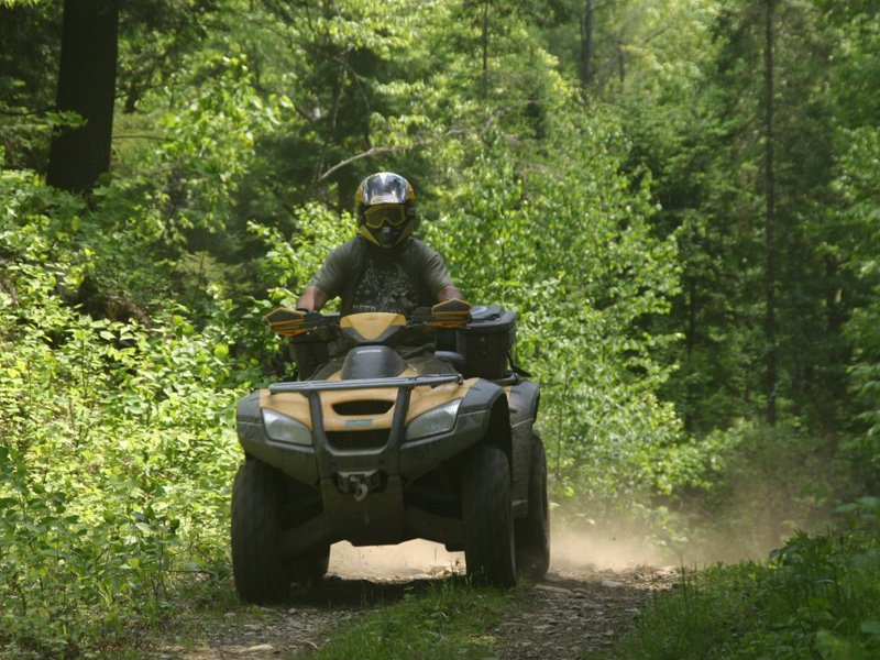 Driving the ATV through the forest.