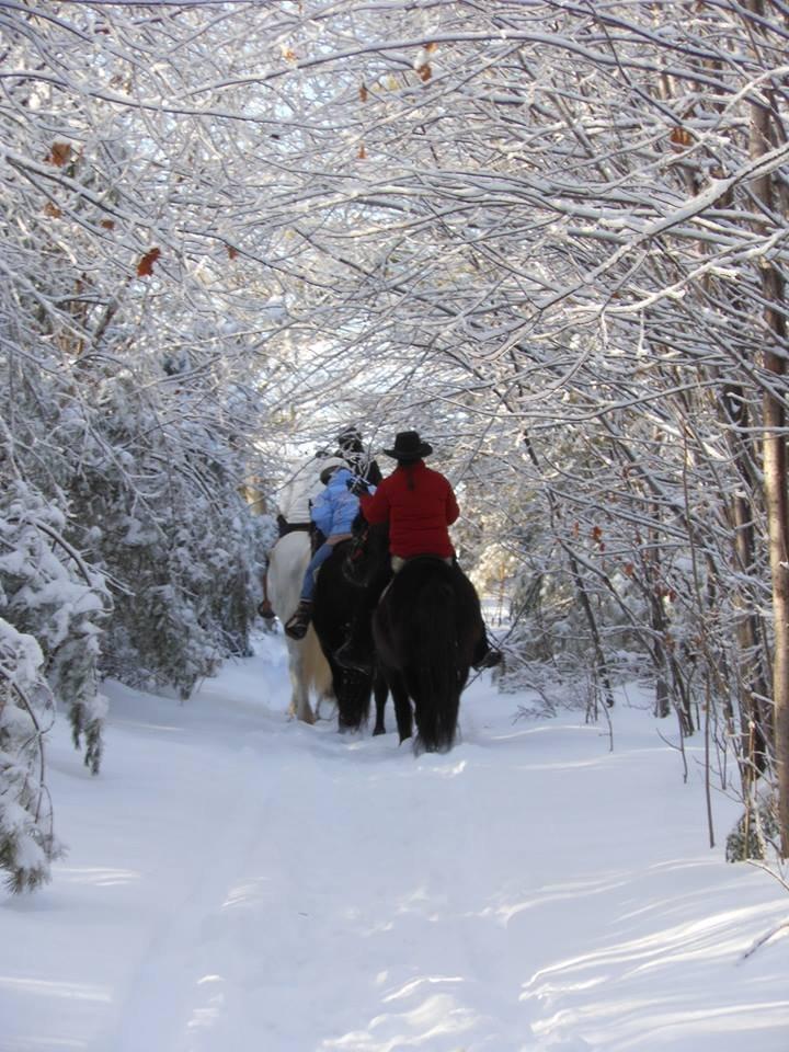 Winter Wonderland Rides