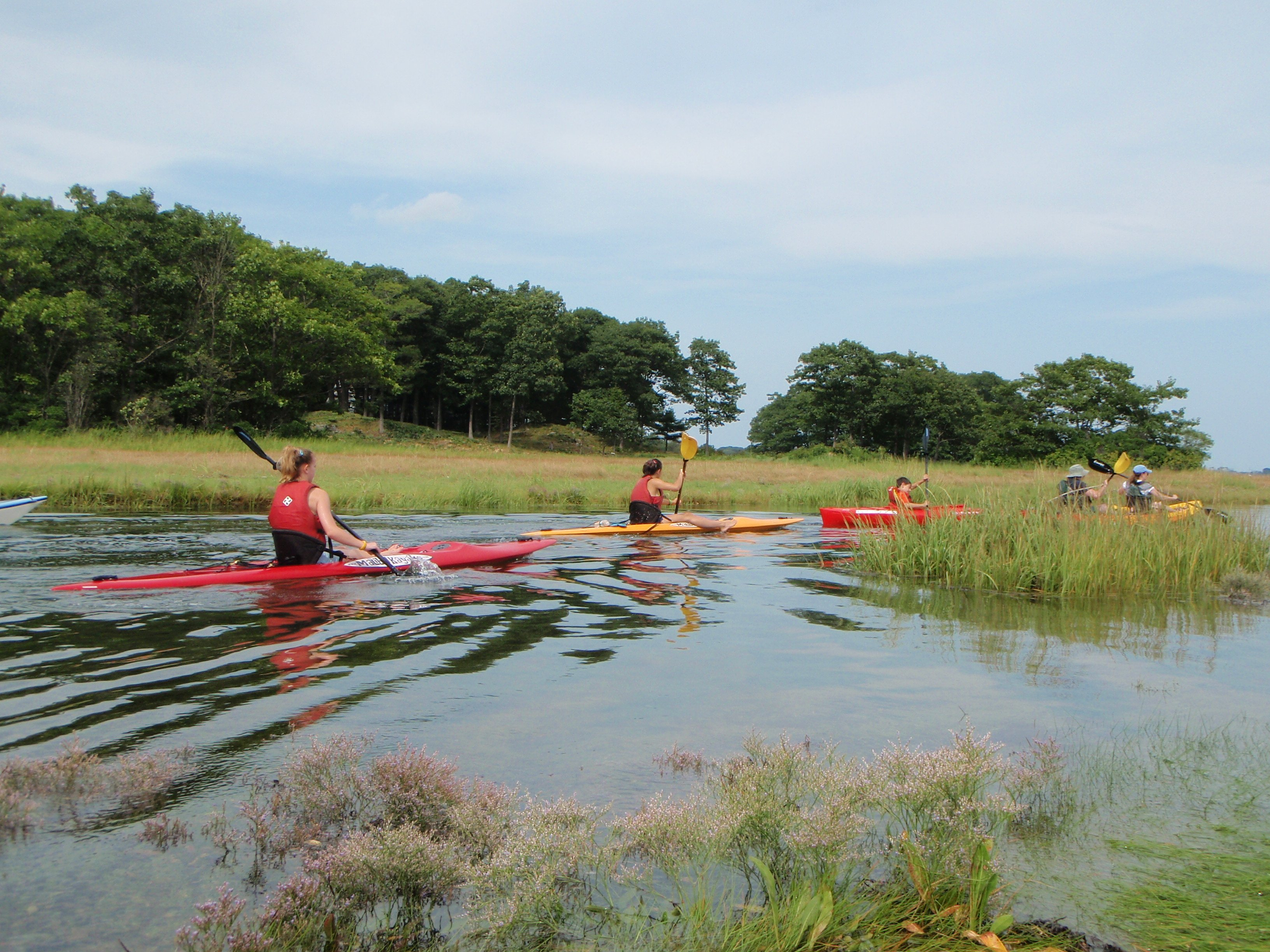 Meandering through the marsh.