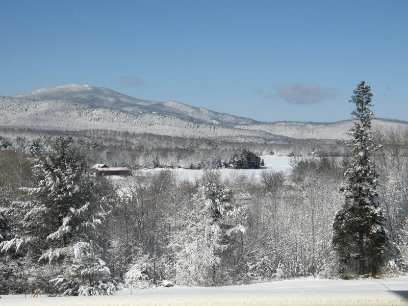 Winter view from the Greenville Inn