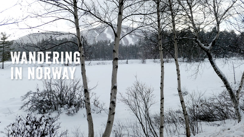 Maine Wanderer Stops in Norway for a Winter Walk