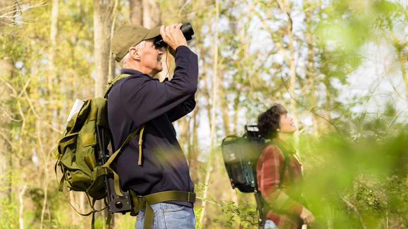 Grab your binoculars and join us for one of True Maine's Birding Festivals.
