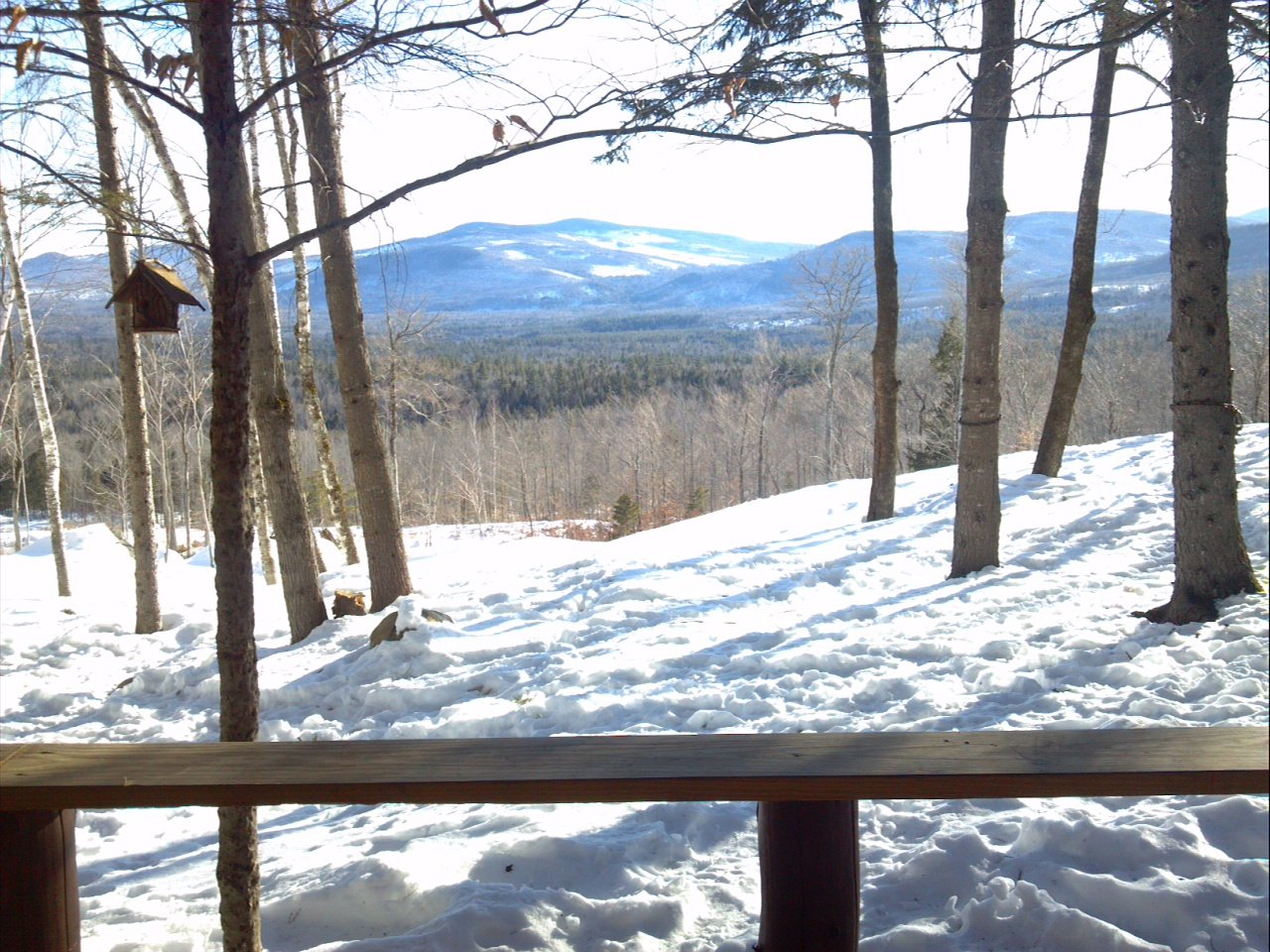 Winter view from your deck