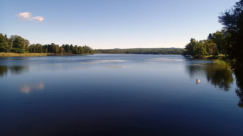Take a break from the road to picnic, hike, or camp at Rangeley Lake.
