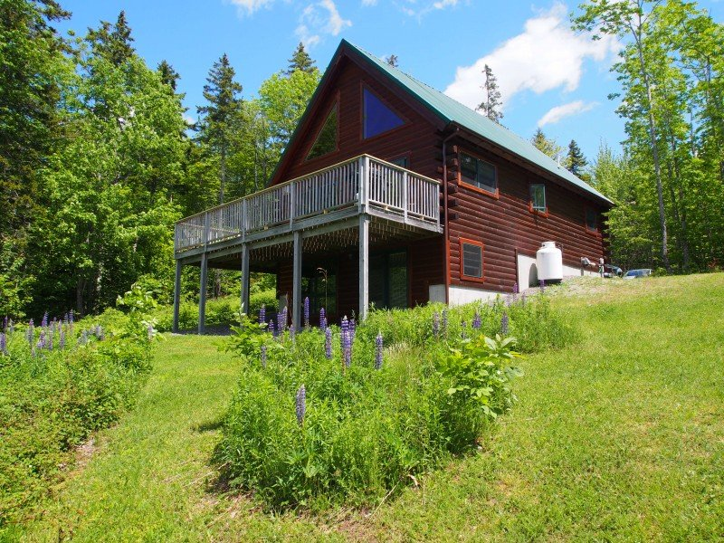 Beautiful Log Chalet up the hill from Frenchman Bay