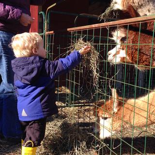 Farm visit!