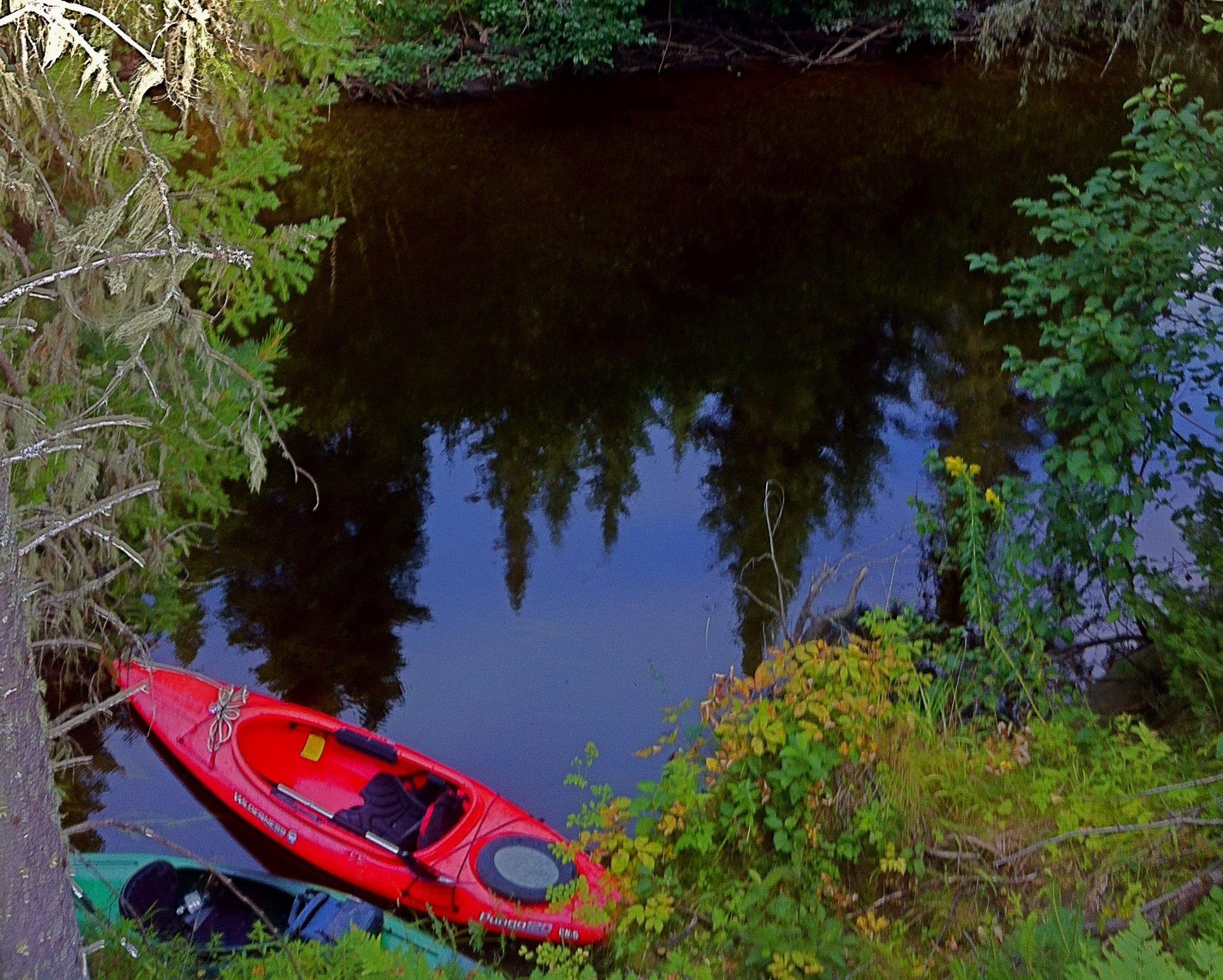 Peaceful Canoe or Kayak Tours!