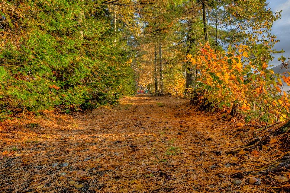 path at camp