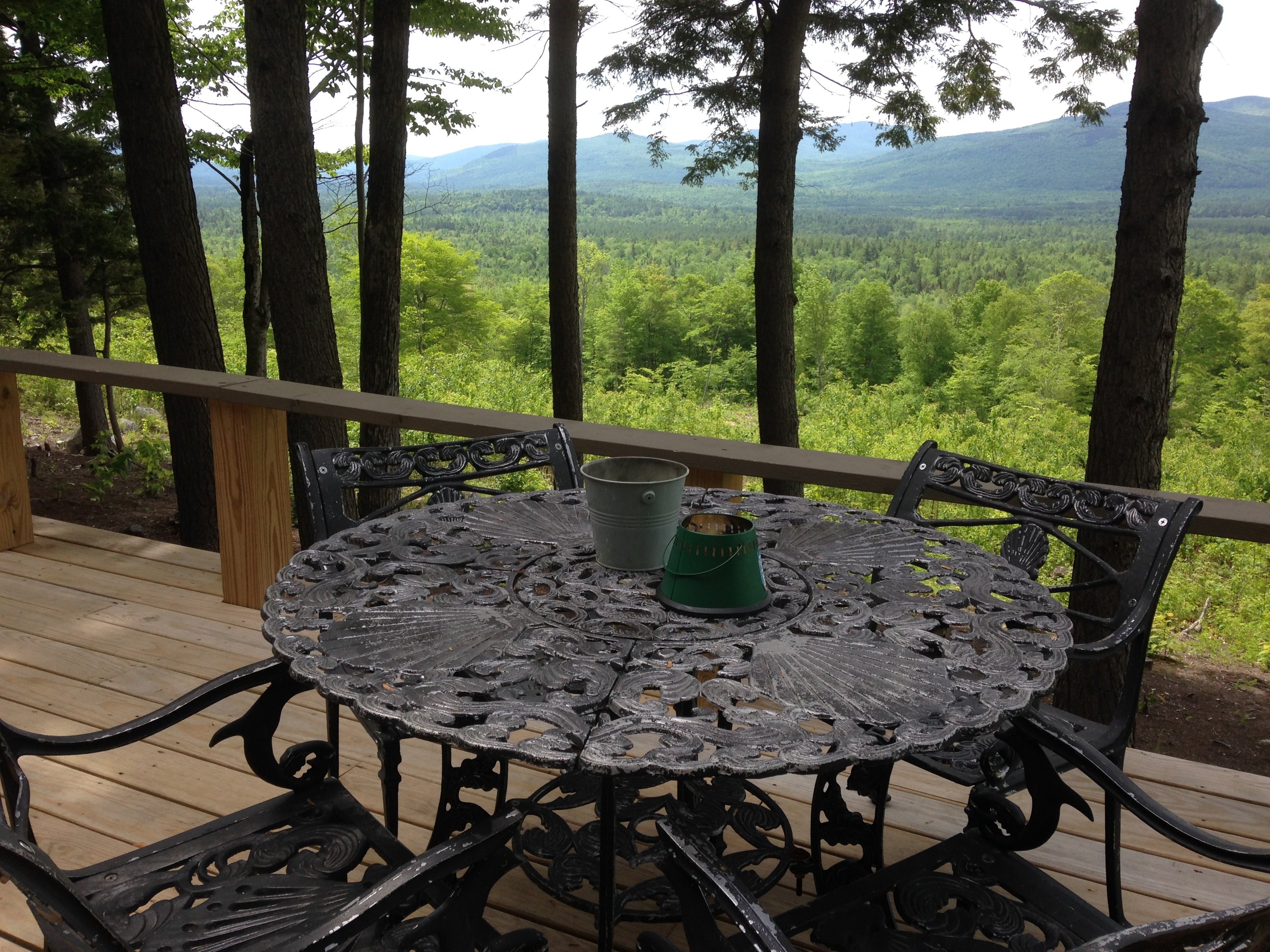 Dining al fresco under the trees. No better view in all of Maine!