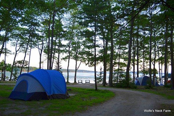 Camping at Recompence Shore Campground