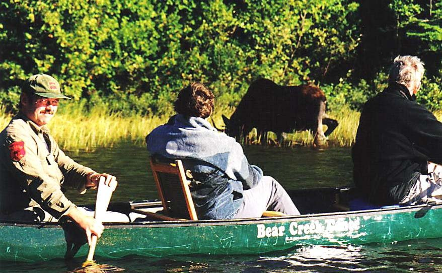 A guided Moose Safari is the best way to see a MOOSE!