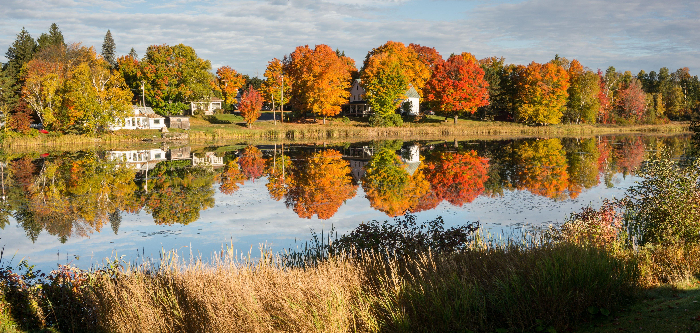 Fall foliage on Haley Pond