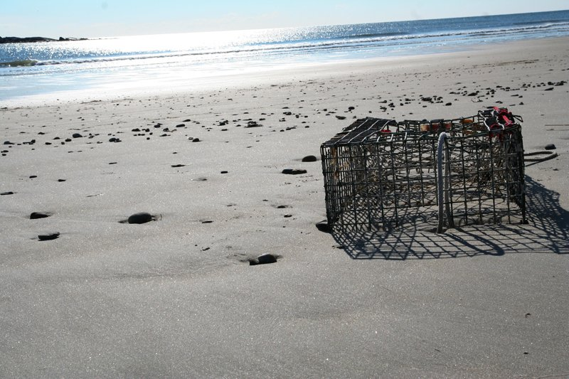 Lobster Trap on Scarborough Beach.