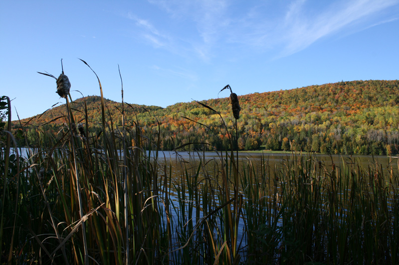 Maine State Parks >> Aroostook State Park Visit Maine