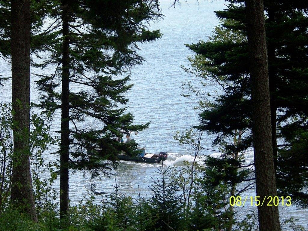 View Between Pines of Lobster Boat Passing Point of Duck Cove Cottage