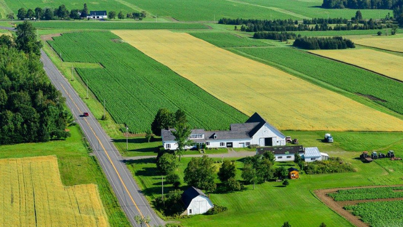 A patch work of forests and farmland make for an exciting landscape to traverse!