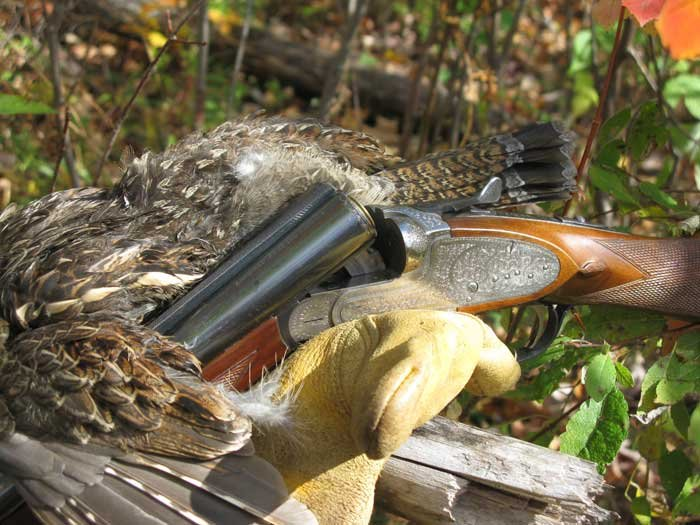 Northern Outdoors offers bird hunting packages