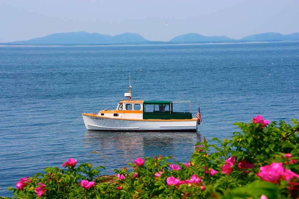 The water taxi from Sail Acadia will bring you out to the island.