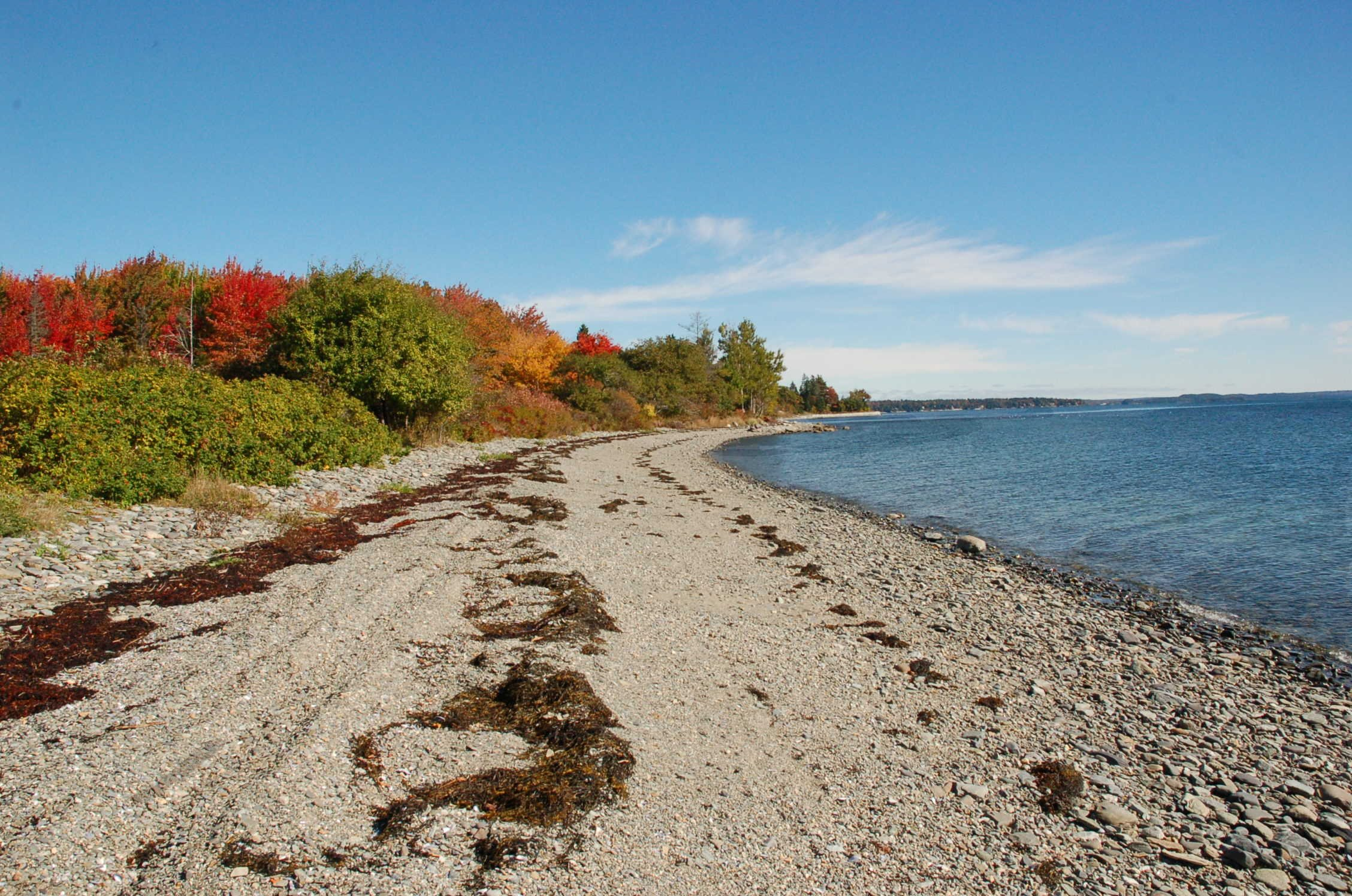 Our beach in the Fall!
