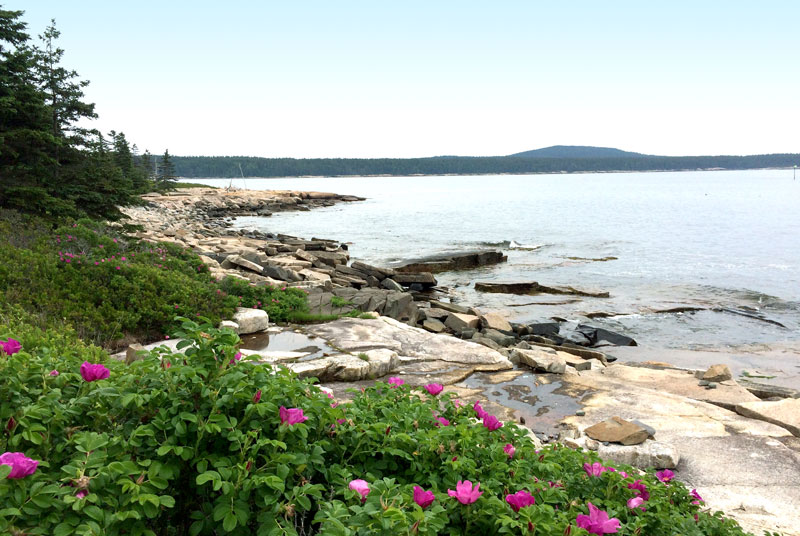 Hiking on the Schoodic Peninsula