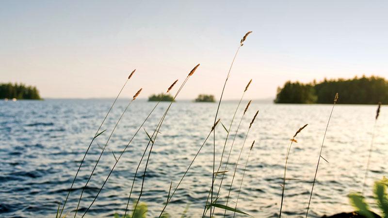 Sebago Lake on a summer morning.