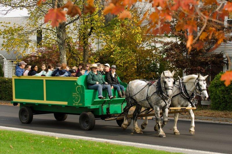Fall Wagon Ride