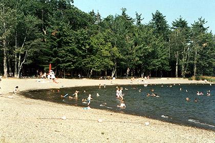 Swan Lake State Parkr