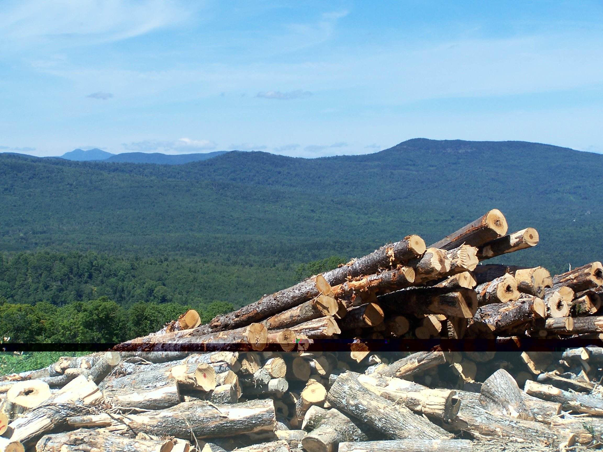 Logging is major industry in these mountains
