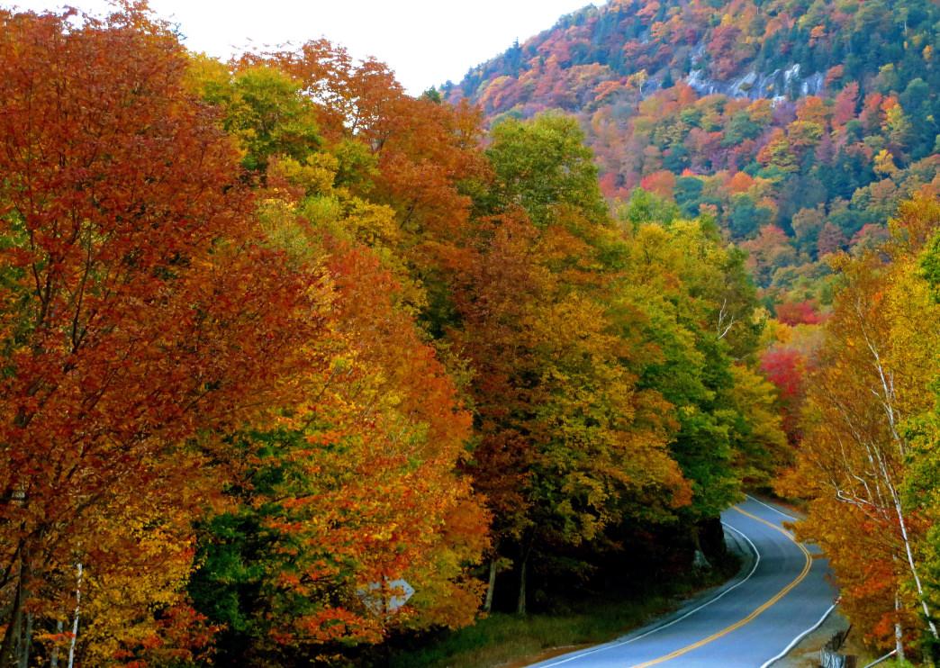 Fall foliage along the region's backroads.
