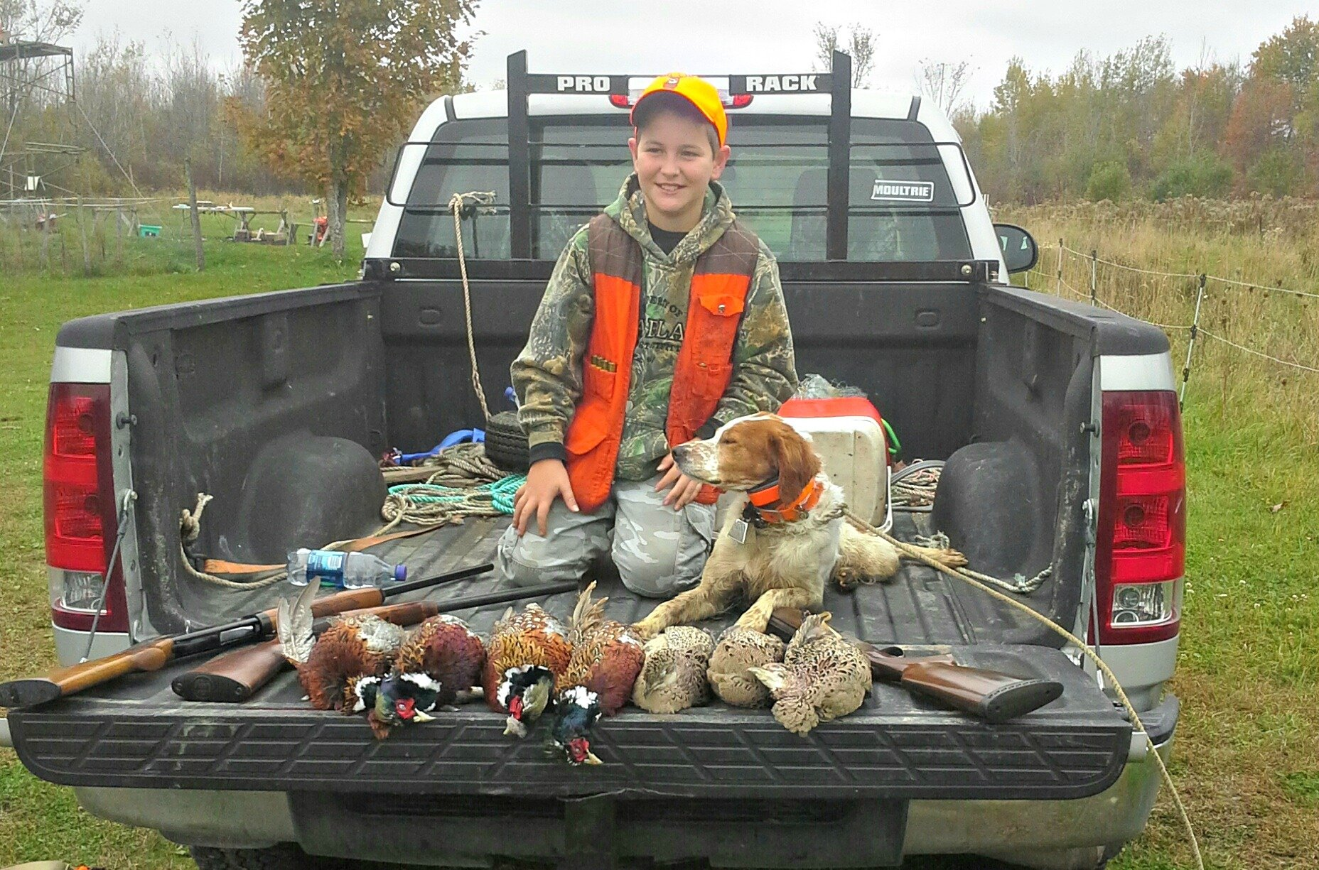 Maine pheasant hunt