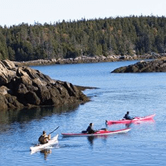 Summer - sea kayaking in Maine