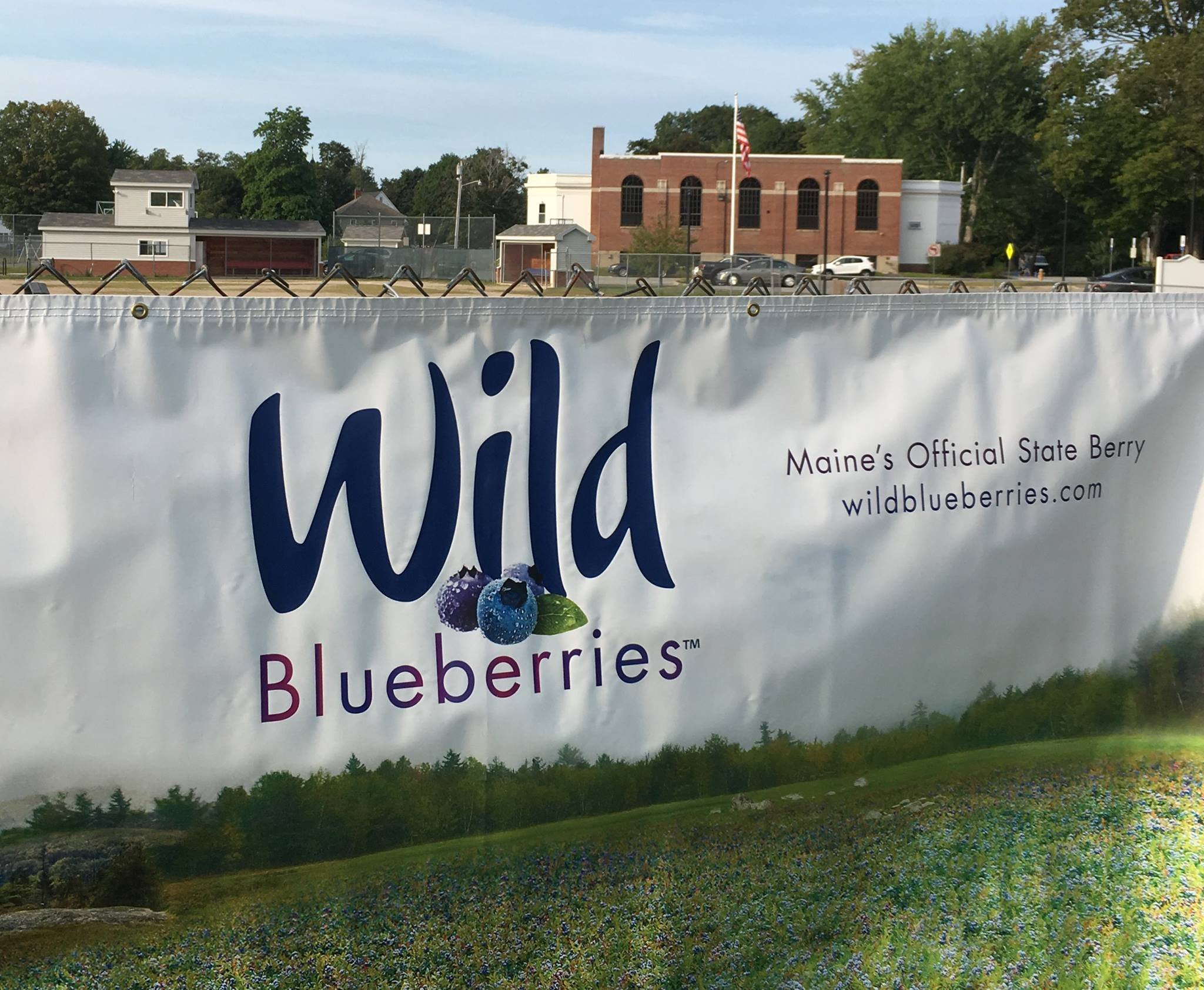 Banner on loan from the Wild Blueberry Commission of Maine