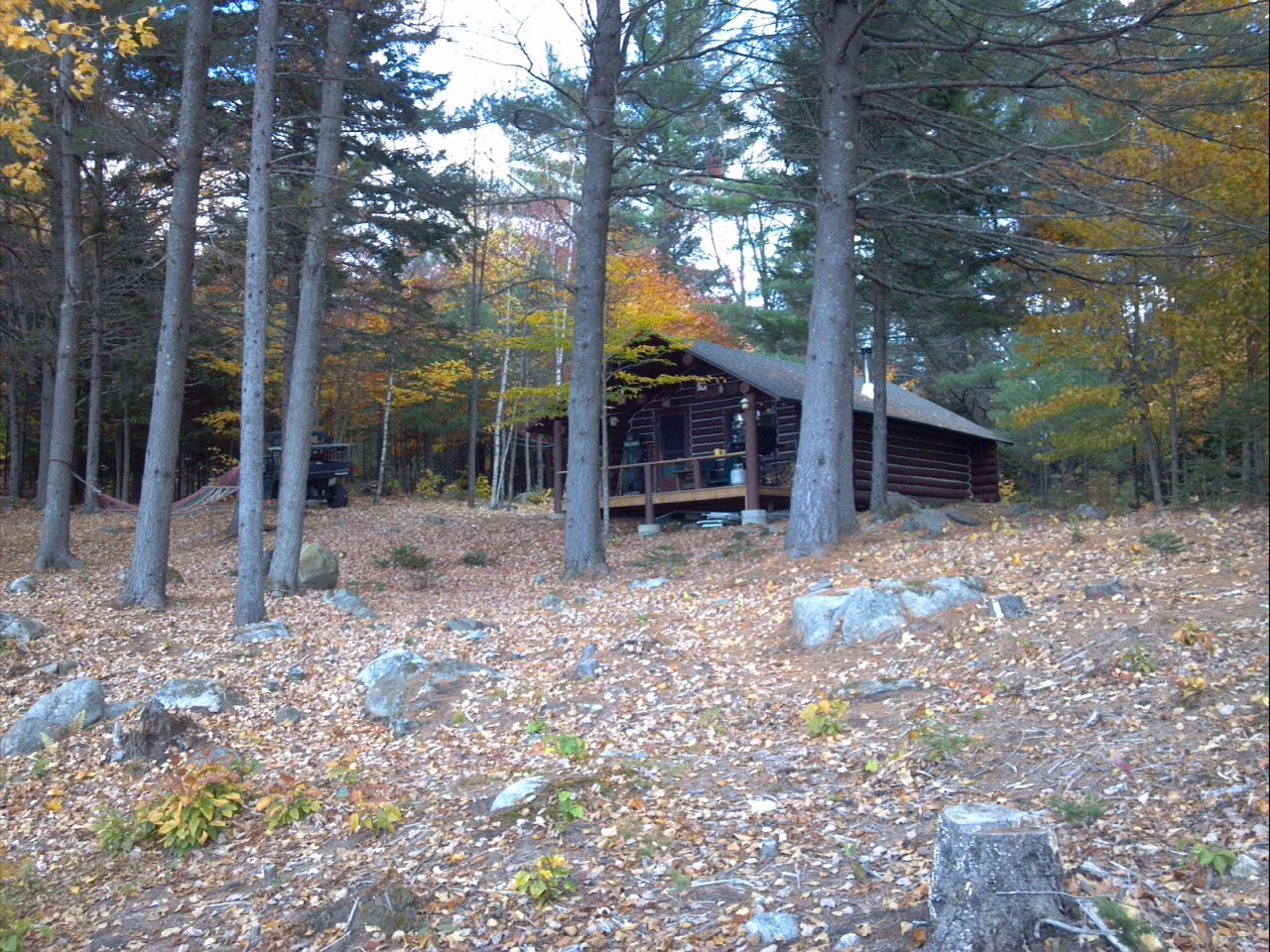 Classic log cabin in the woods