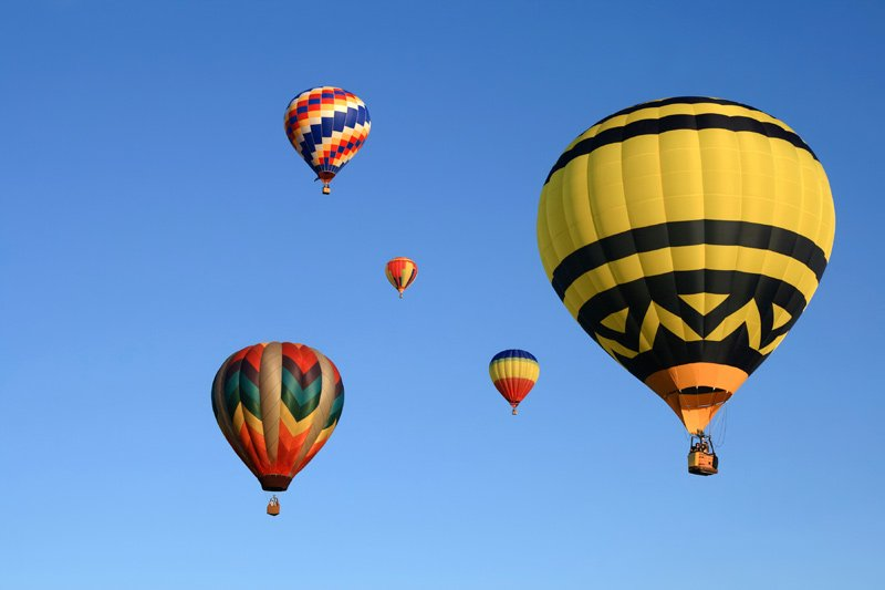 Many beautiful hot air balloons in the clear sky.