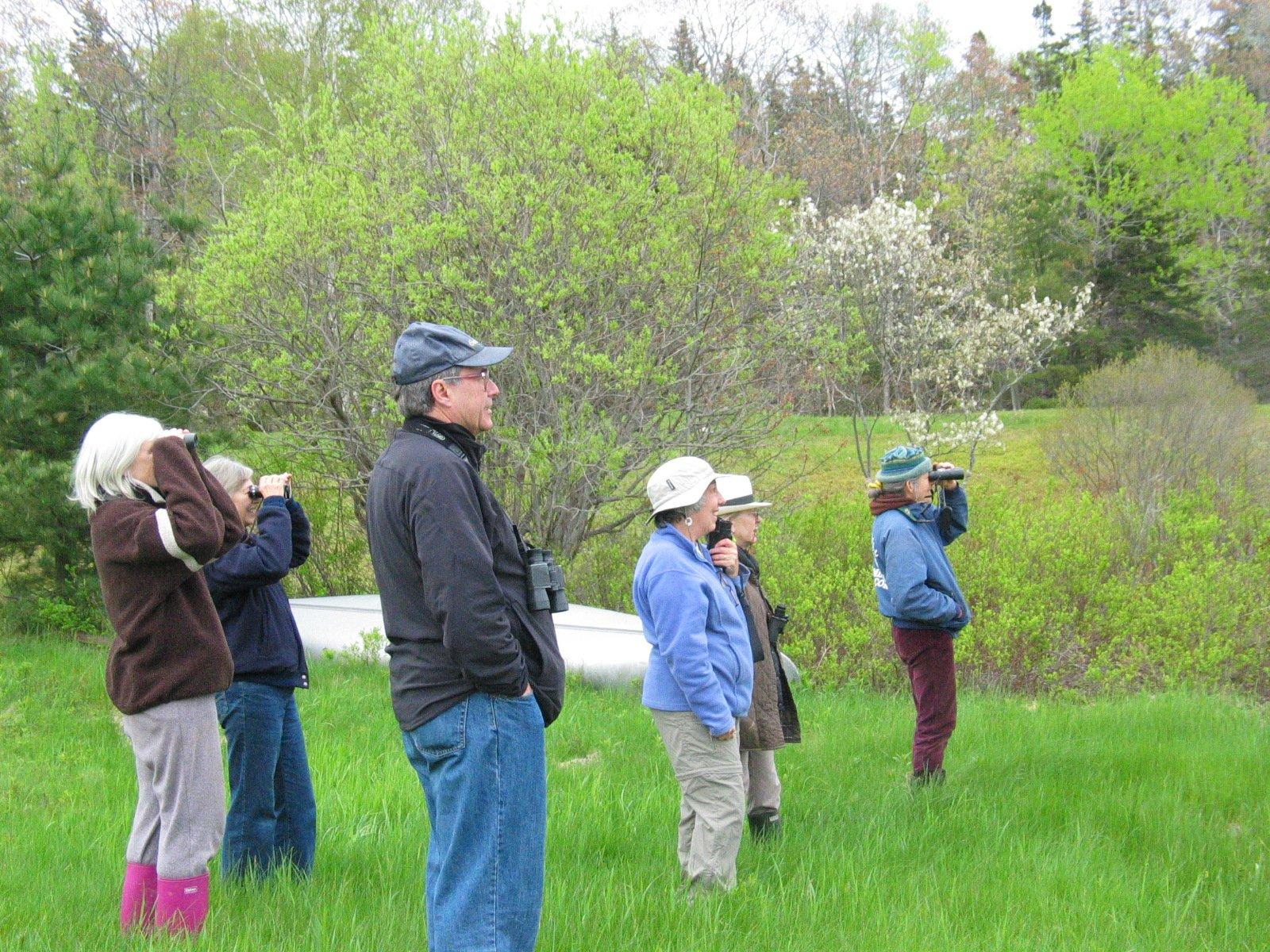 Birding Mariners Park with Bob Duchesne
