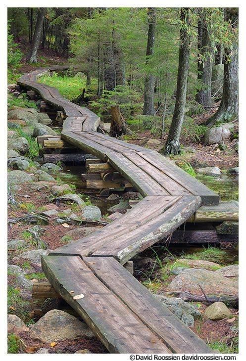A walk to Sandy Stream Pond