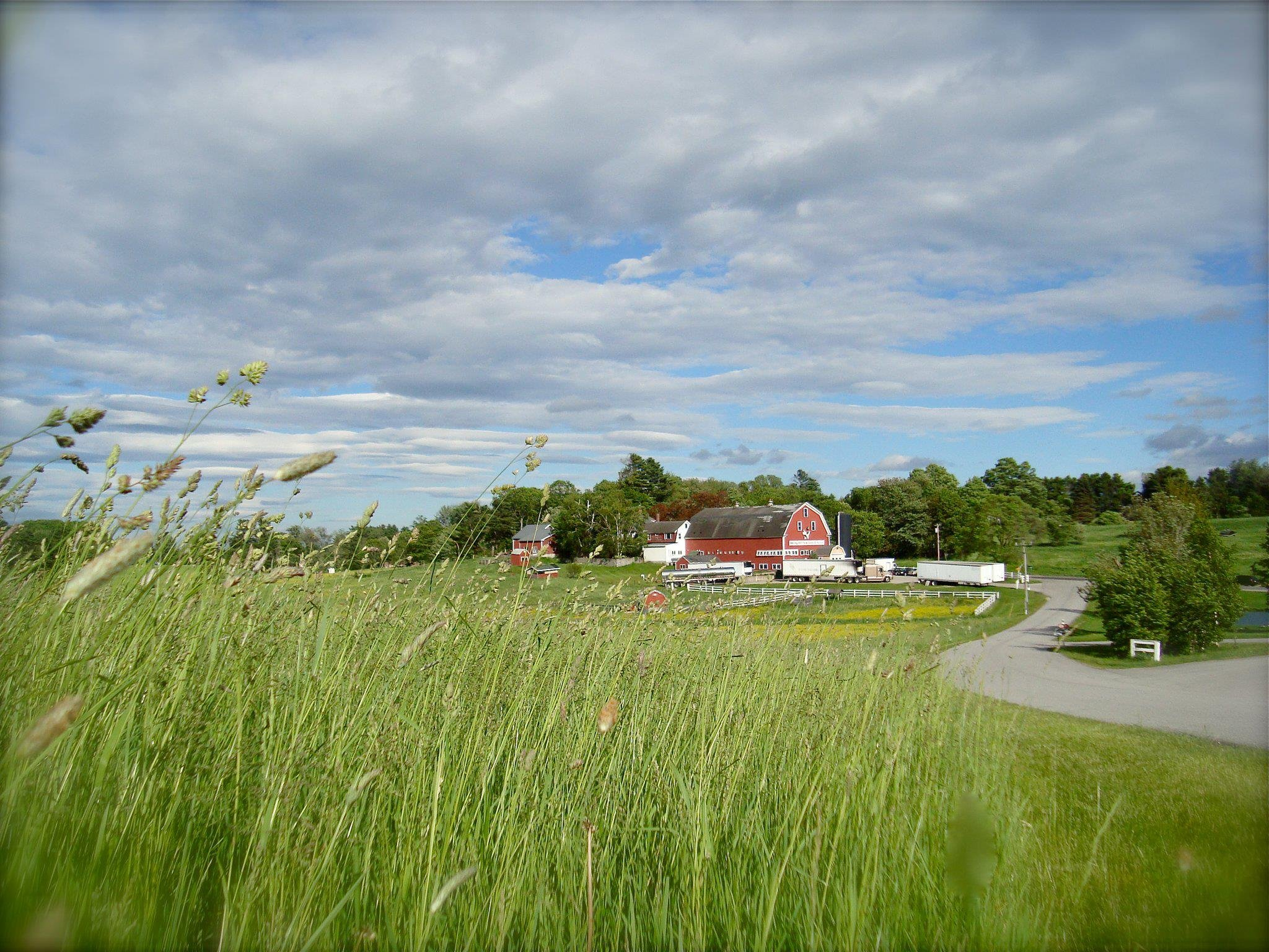 Summer on Farm includes many activities, such as our Barnyard Petting Area which is open daily 9-5 from May-October.