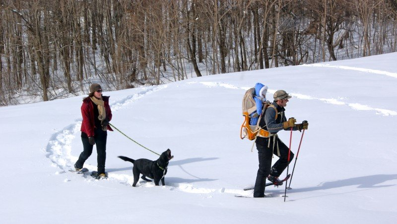 If you can walk, you can snowshoe!