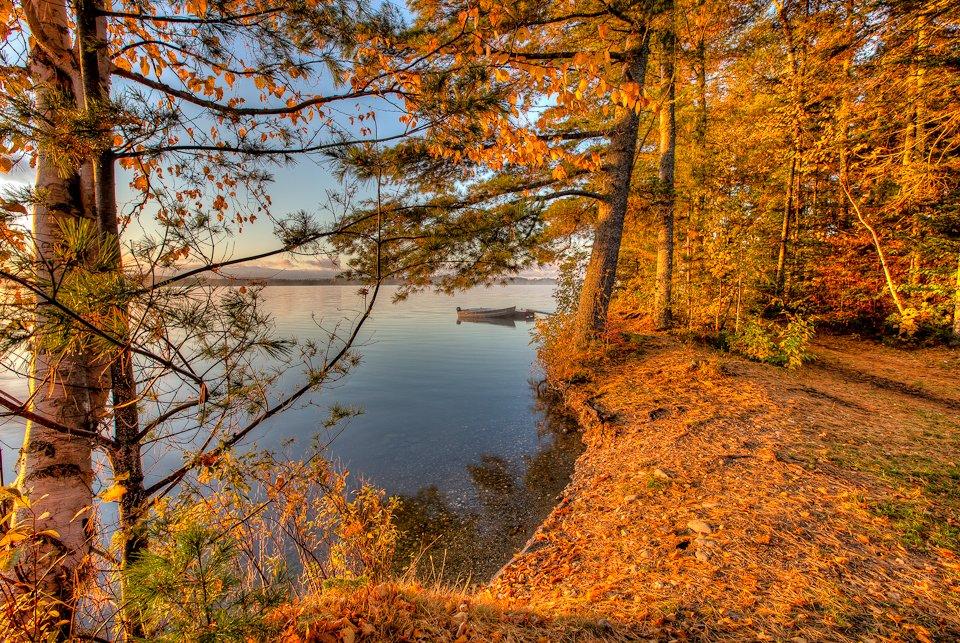 Spencer Pond Camp Shore