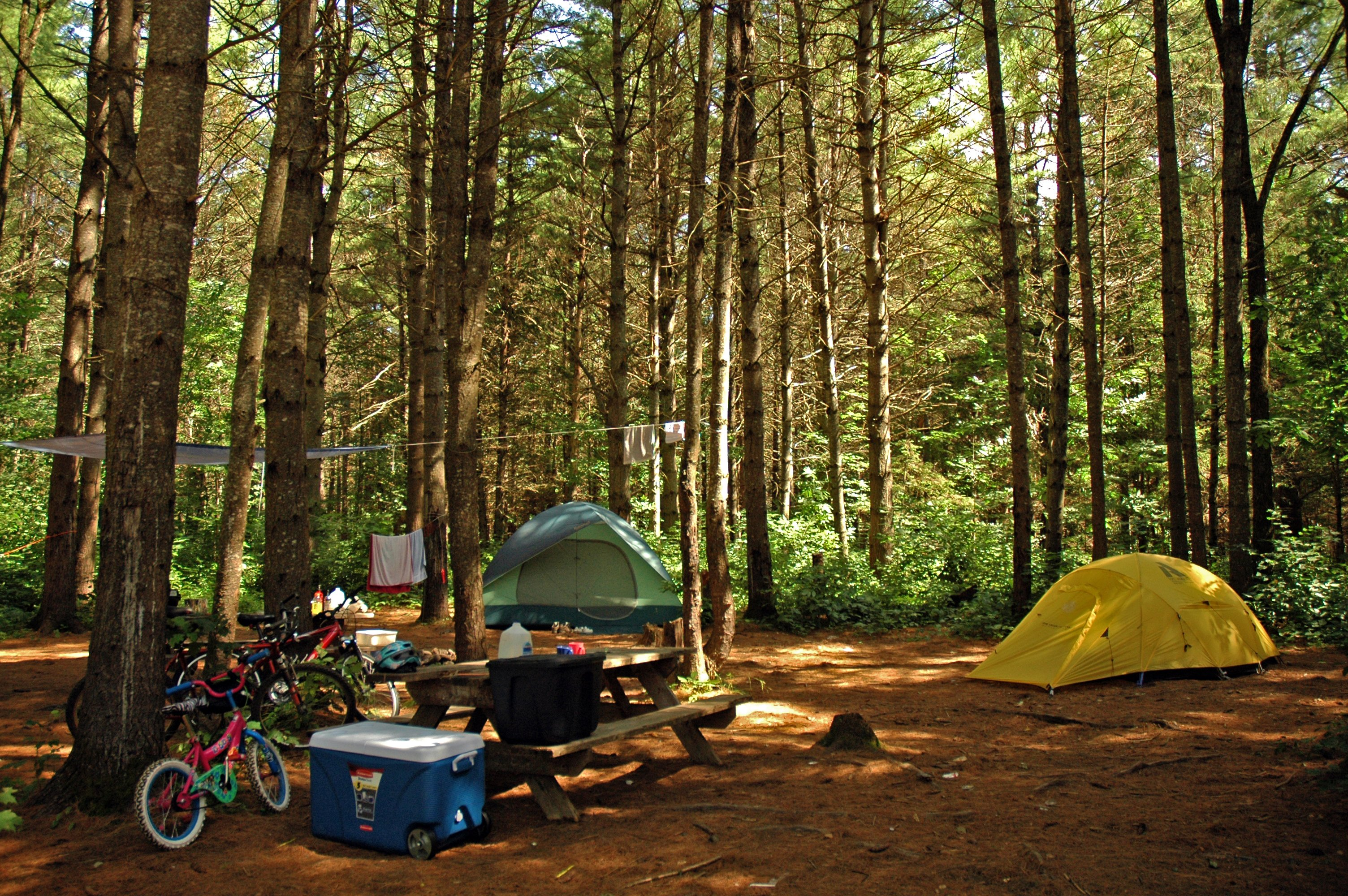 Tent campsites at the Kennebec River Campground, at Northern Outdors