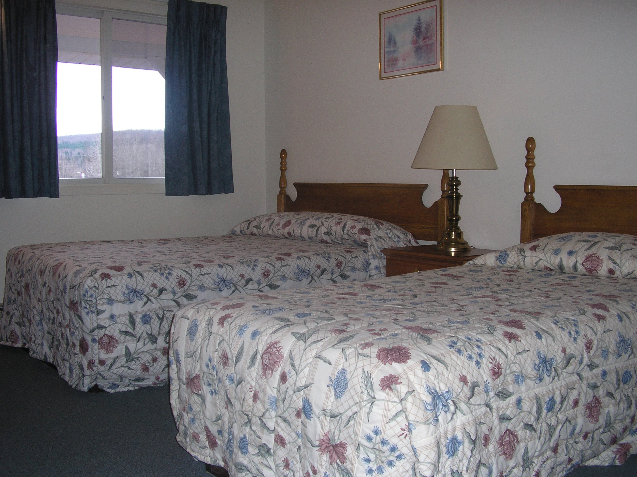 One of our standard rooms with two beds. All of our rooms have a micro wave and fridge,