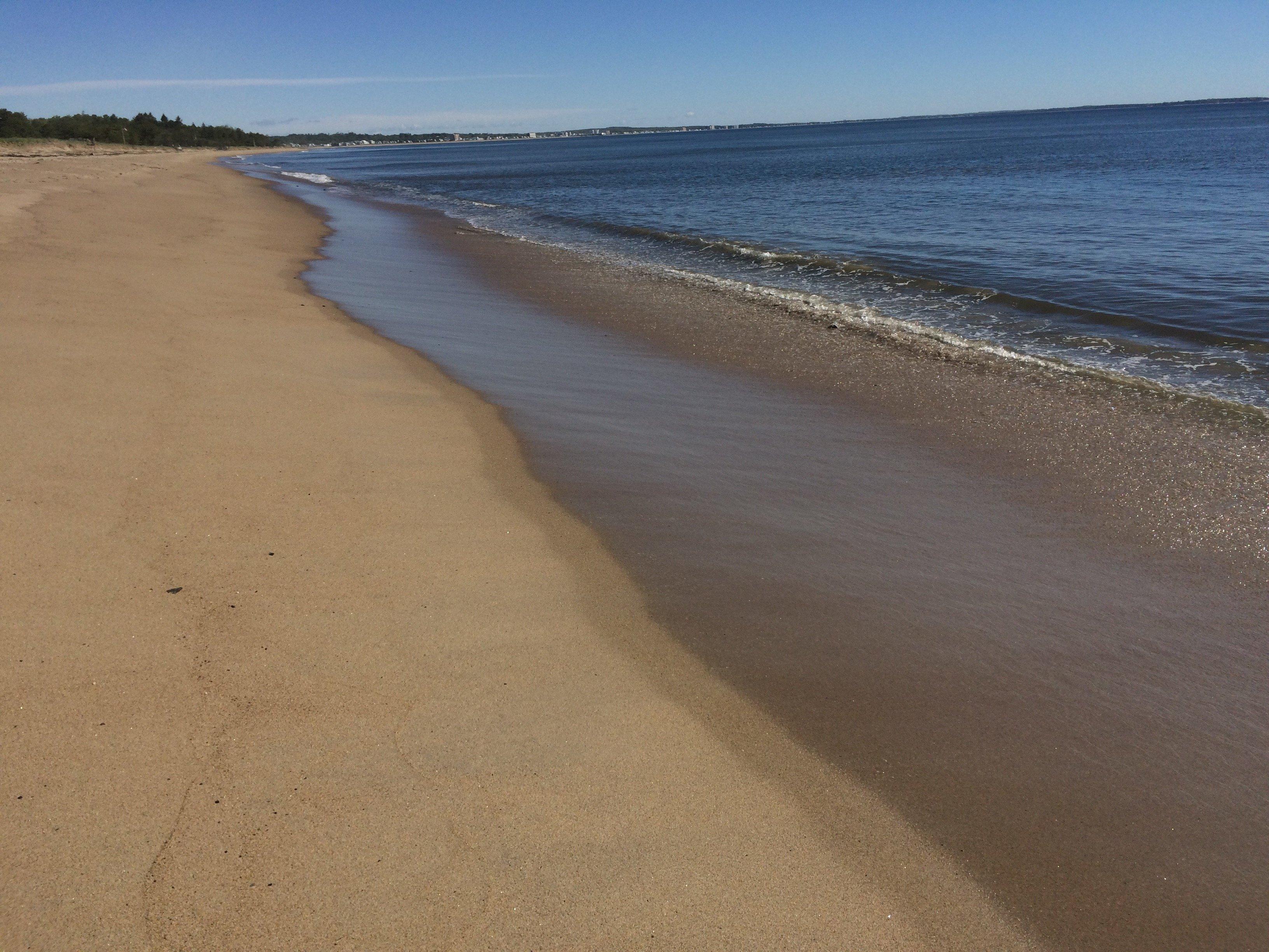 Empty Ferry Beach