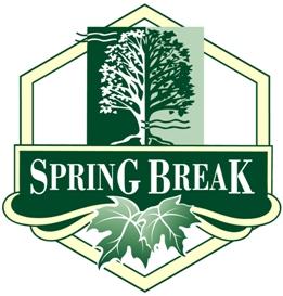 Spring Break Maple & Honey