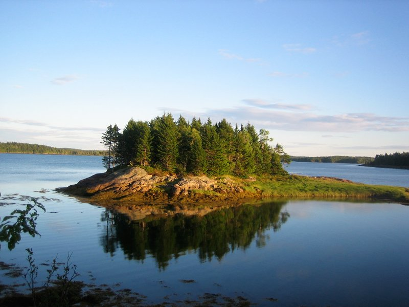 Island in Cobscook Bay State Park, Maine.