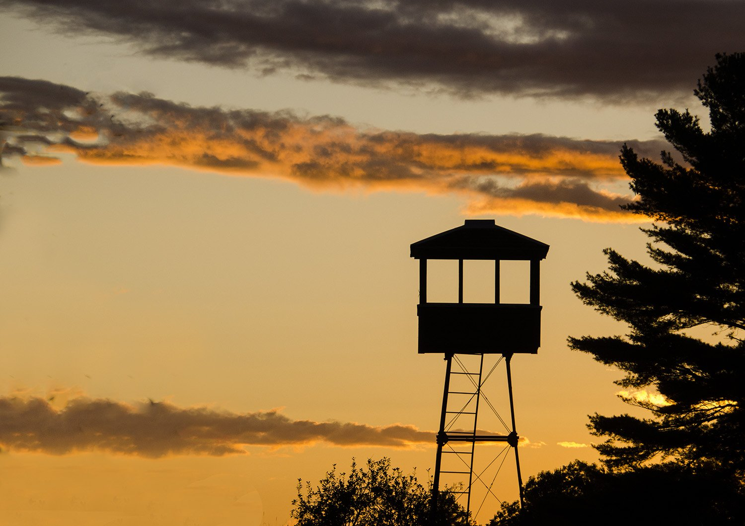The wildlife tower at sunset
