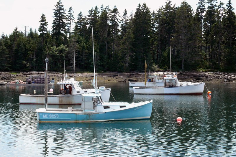 Fishing boats off Winter Harbor.